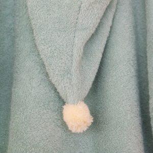 poncho green nobodinoz