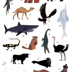 poster stickers animaux poppik