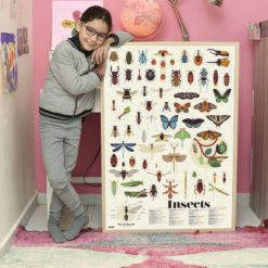 poster stickers insectes poppik
