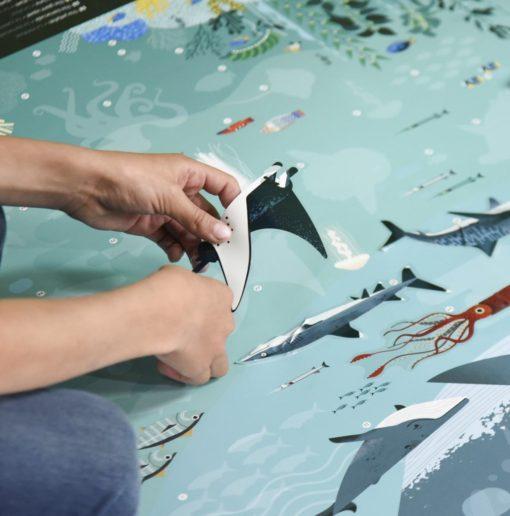 poster stickers océans poppik