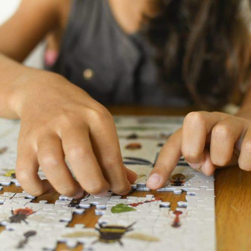 puzzle insectes poppik