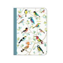carnet oiseaux cartes d'art